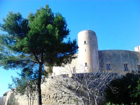 Vista del castillo desde el aparcamiento