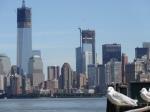 Gaviotas y skyline NY