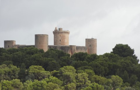 Vista del Castell de Bellver desde el Hotel Horizonte