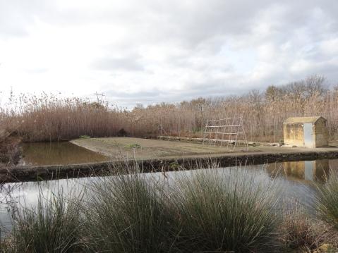 Zona de cultivo conservada
