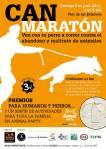 can maraton palma